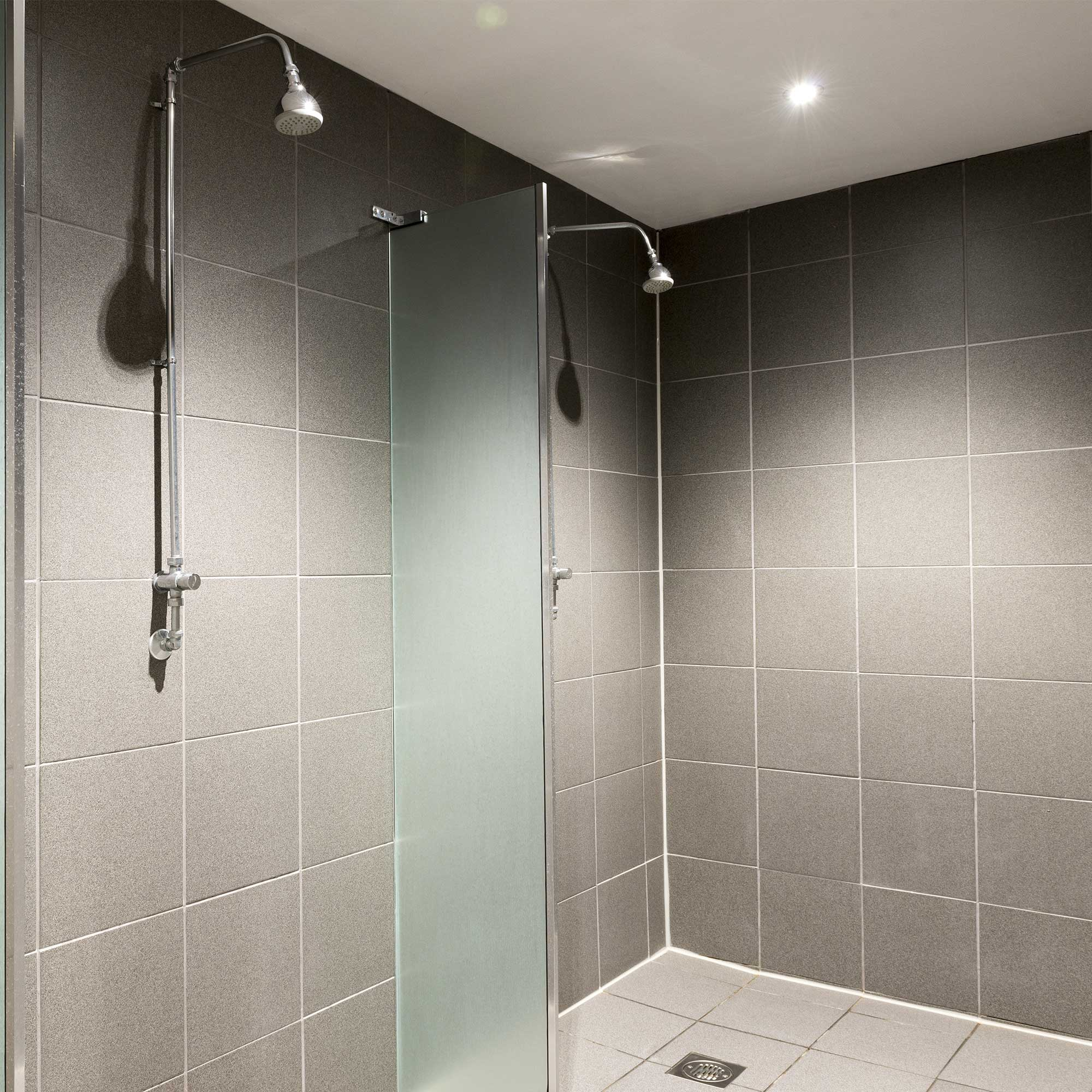 Quadrasan Purge - Shower - Washroom