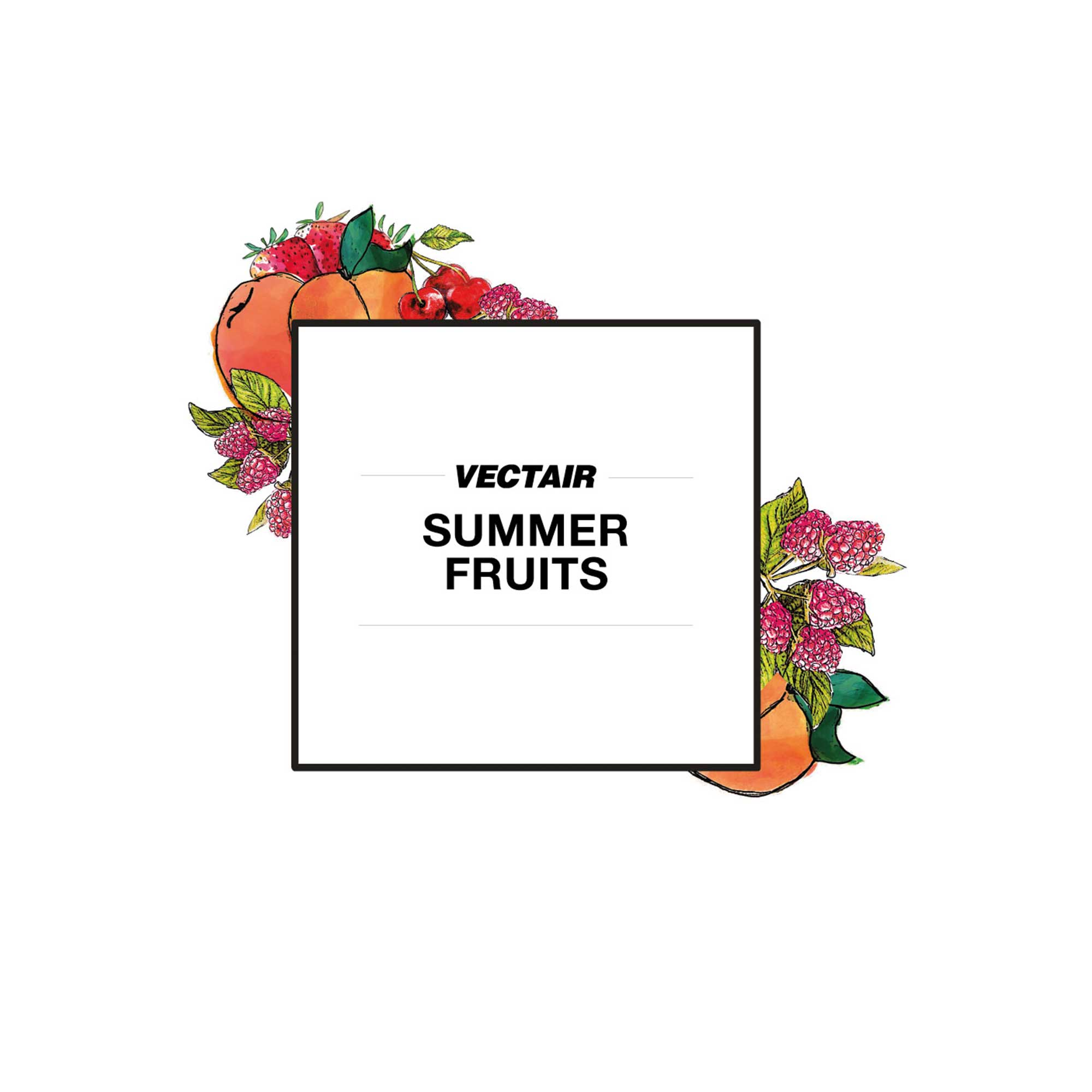 Summer Fruits Icon