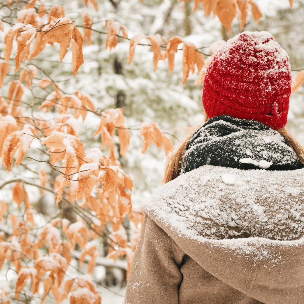 Winter - Covid-19